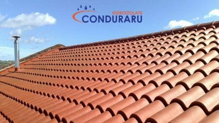 Conduraru - Money (2)