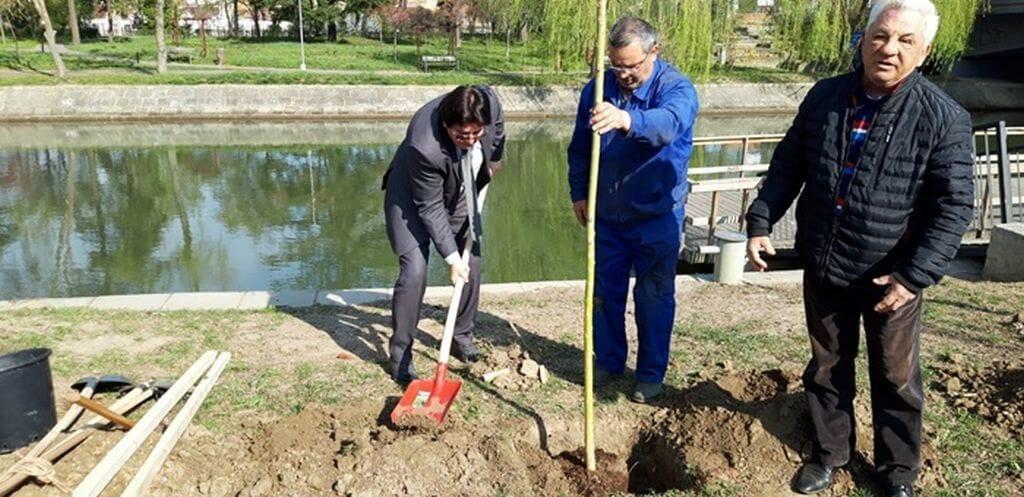 Directorul Horticultura Timişoara, Andrei Drăgilă, care conduce instituţia din 1991: Am fost intimidat şi s-au făcut presiuni asupra mea pentru a demisiona din postul pe care l-am ocupat în urma unui concurs legal